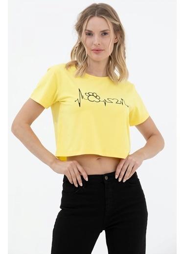 Sementa Oversize Basic Baskılı Kısa Tshirt - Sarı Sarı